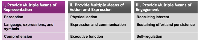 Principle 1: Multiple Means of Representation
