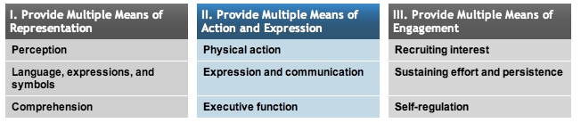 Principle 2: Multiple Means of Action & Expression