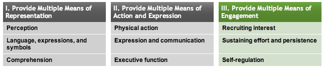 Principle 3: Multiple Means of Engagement